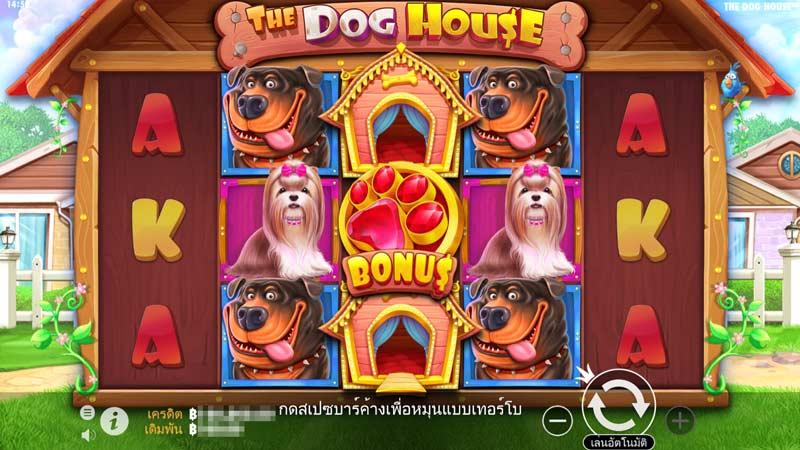 The Dog House สนุก